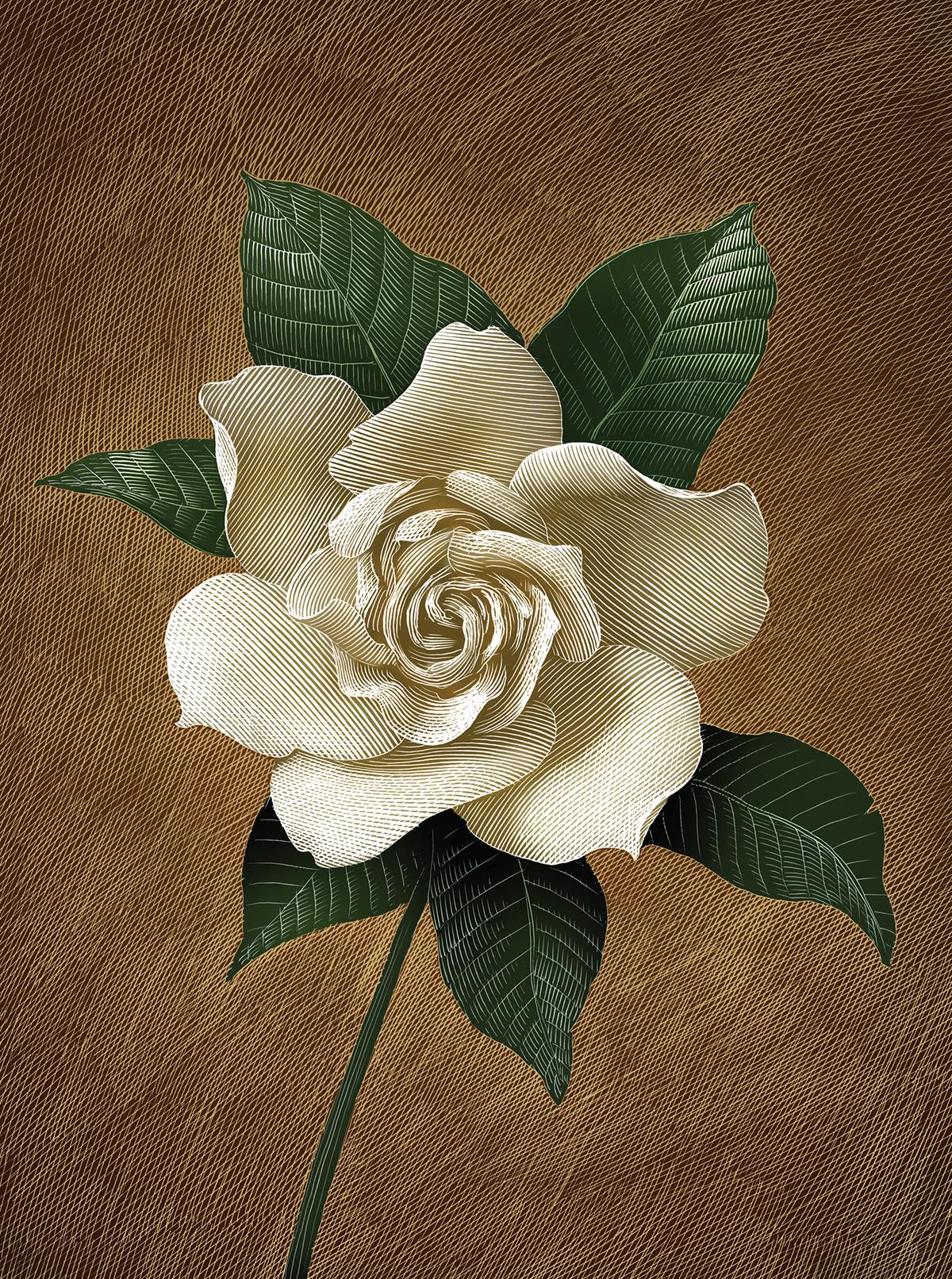 TWAIN_gardenia